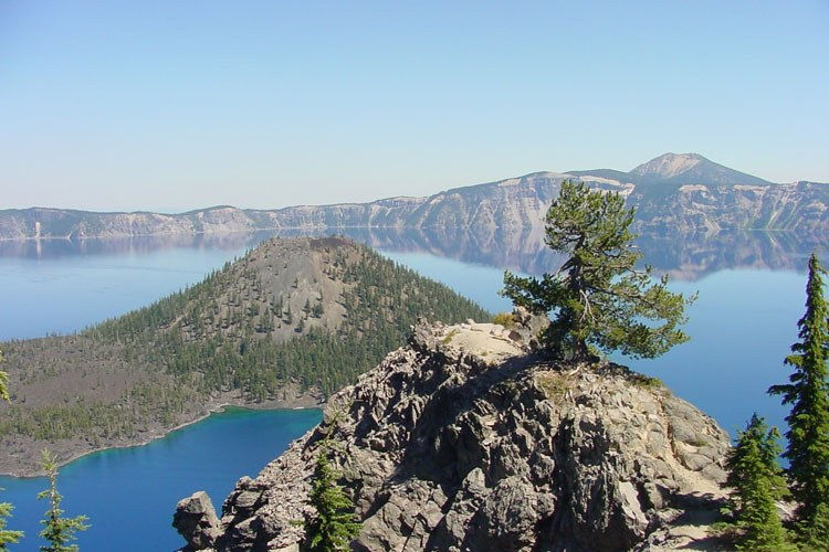A whitebark pine grows atop a rocky outcrop above Oregon's Crater Lake.