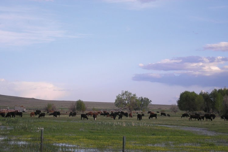 The Salazar family ranch, in Colorado's San Luis Valley.