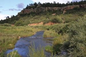 Water-quality standards unfairly burden rural communities