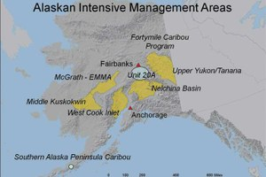 Alaska intensive predator management areas