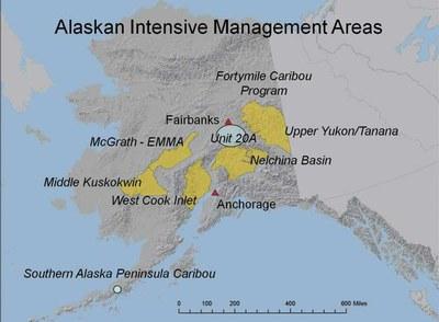 Alaska intensive predator management areas