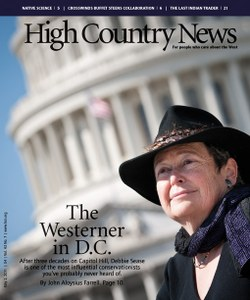 The Westerner in D.C