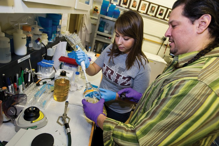 Michael Ceballos works in the University of Montana's Native American Research Lab with student Chelsea Morales, a Gros Ventre tribal member. In the background, the Wall of Fame shows former students who have excelled in the lab.