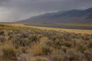 Wind farms test efforts to cooperate on Oregon's Steens Mountain
