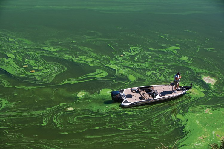 A bass fisherman casts a line into the algae-clogged waters of the Iron Gate Reservoir, March 2009, i