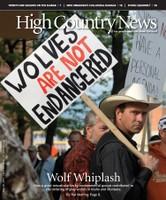 Wolf Whiplash
