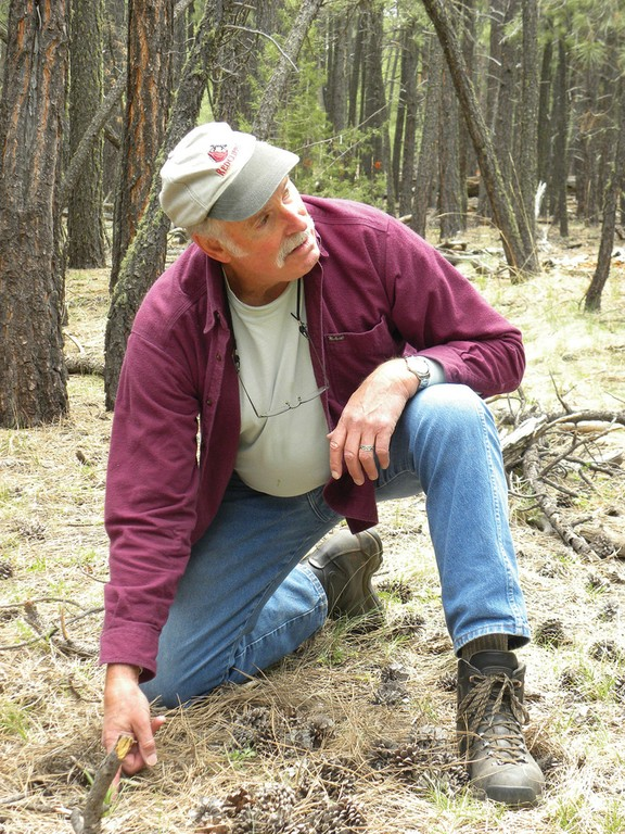 Richard Reynolds in the Long Valley Experimental Forest, south of Flagstaff, Arizona, where a restoration project based on the Goshawk Recommendations' food-web theory has been proposed.