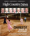 The Darkest Shade of Polygamy