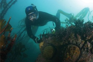 On the hunt for abalone poachers in Northern California