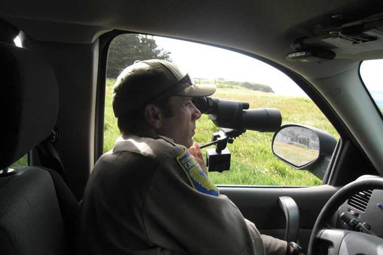 "The cat-and-mouse game between wardens and poachers has spawned a blizzard of technical wizardry. Powers' 4x4 is equipped with an infrared spotlight; at night, he can sneak up on poachers ""blacked out"" with no headlights"