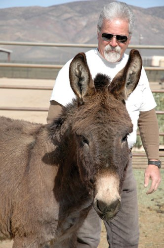 A BLM employee and a burro at the National Wild Horse and Burro Center in Palomino Valley.