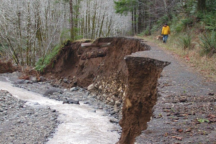 The North Fork road on the Tillamook State Forest, blown out from erosion and flooding.