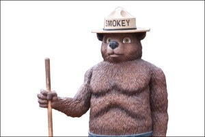 Smokey Bear: From cute to buff, and in between