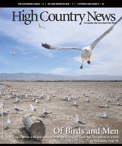 Of Birds and Men