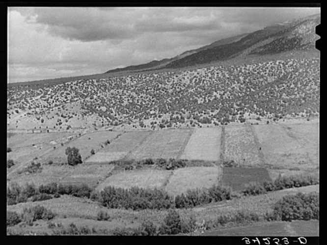 Farm fields in the Arroyo Hondo land grant area.