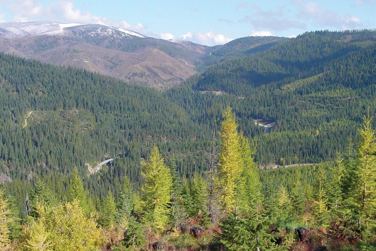 Checkerboard parcels in the Upper Lochsa area of the Clearwater National Forest could be swapped.