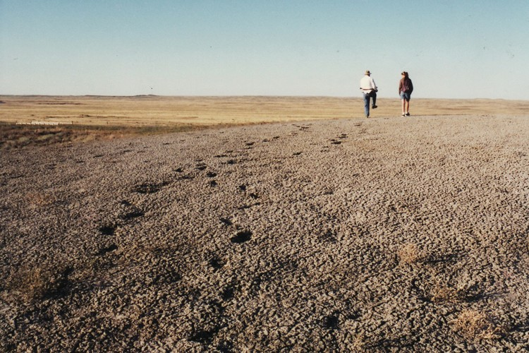 The author (right) and her father, Peter Gilman, walk back to the family van after a long day of fossil hunting near Ingomar, Montana, ca.1995.