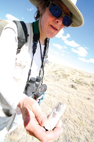 Peggy LeMone, the author's mother, shows off a baculite found west of Casper, Wyoming, this July.