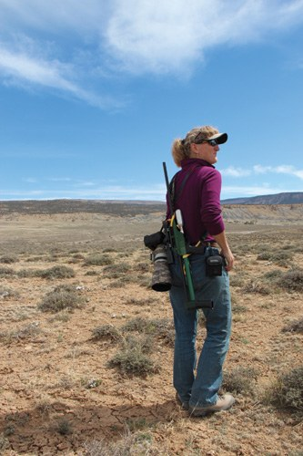 T.J. Holmes on the range in Disappointment Valley in southwestern Colorado, where she uses a rifle to shoot darts loaded with PZP, a substance that makes m