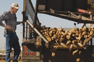 Agrichemical companies power up genetically modified seeds