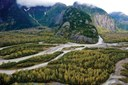 A sampler of U.S. environmentalists working in British Columbia