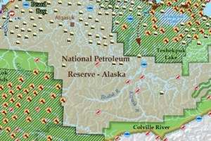 Wildlife of the National Petroleum Reserve-Alaska