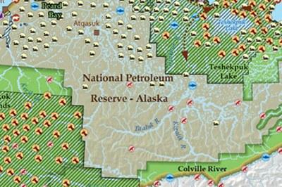 Wildlife of the National Petroleum Reserve-Alaska