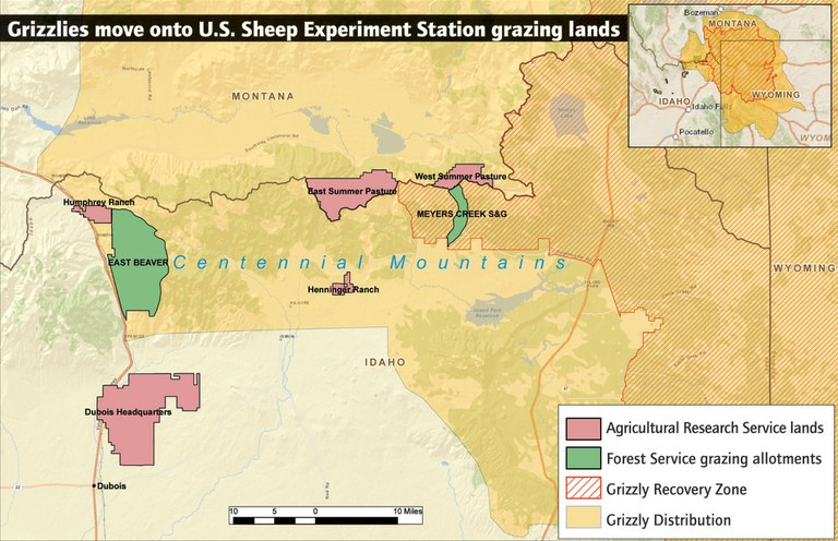 As Yellowstone's population of grizzly bears has recovered, it's begun to spread out of the park -- and onto lands where the Agricultural Research Service's Sheep Experiment Station runs its flocks. (Sources: Grizzly distribution data supplied by US Fish and Wildlife Service.)