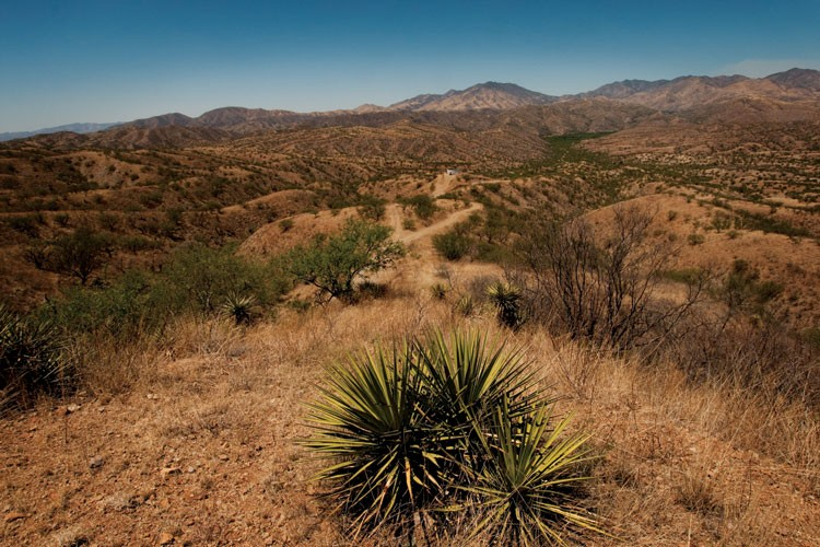 Carlos Robles Elías's 10,000-acre Rancho El Aribabi in northern Sonora, Mexico.