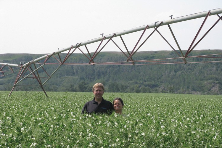Gary and Barb Lewis pose in a field of the Bio-Agtive-grown peas on their farm in Pincher Creek, Alberta