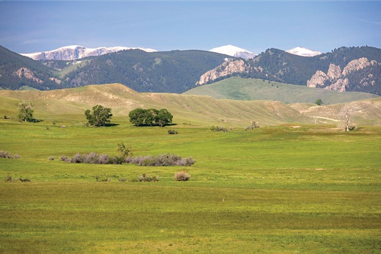 Sand Creek Ranch in Buffalo, Wyoming, where homeowners have a share in a working hay ranch, as well as p