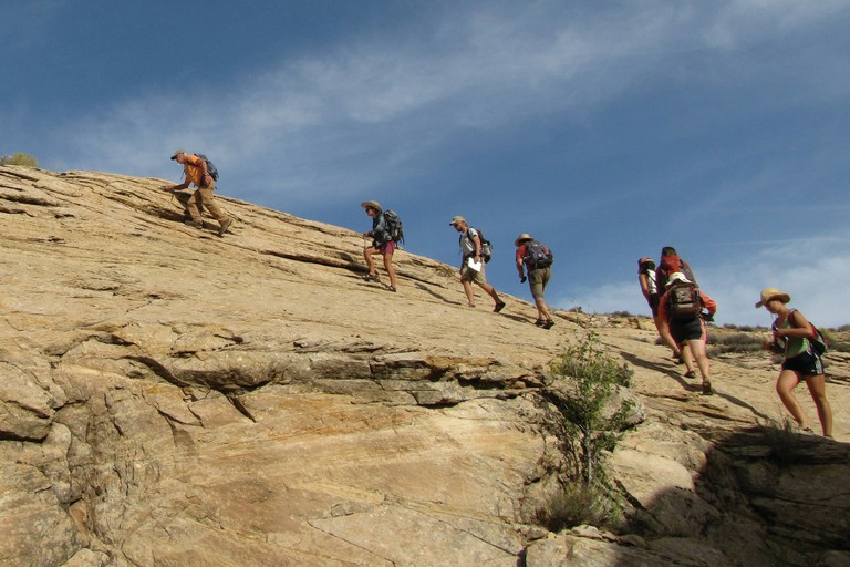 Artist and archeologist Joe Pachak leads the Westies up the slickrock on Comb Ridge near Bluff, Utah, last October.