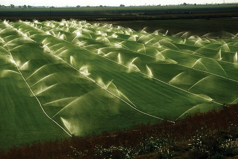 Irrigation in California's Central Valley.