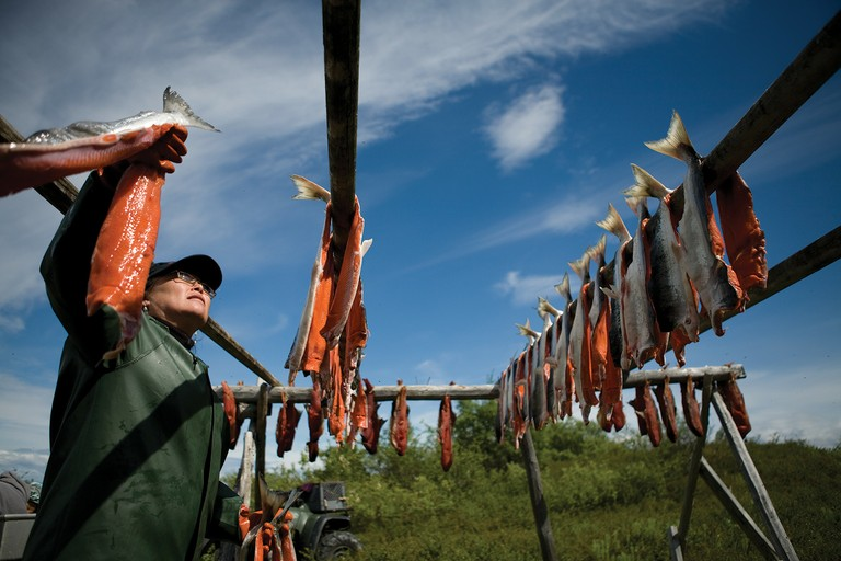 Subsistence fisher Lydia Olympic hangs her sockeye salmon to dry before smoking it at her family's fish camp along the Kvichak River in Igiugig, Alaska.