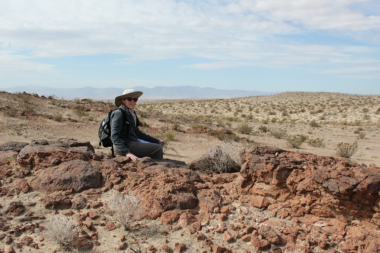 Kristin Berry, tracking desert tortoises in the Mojave last April. Her research helped inspi