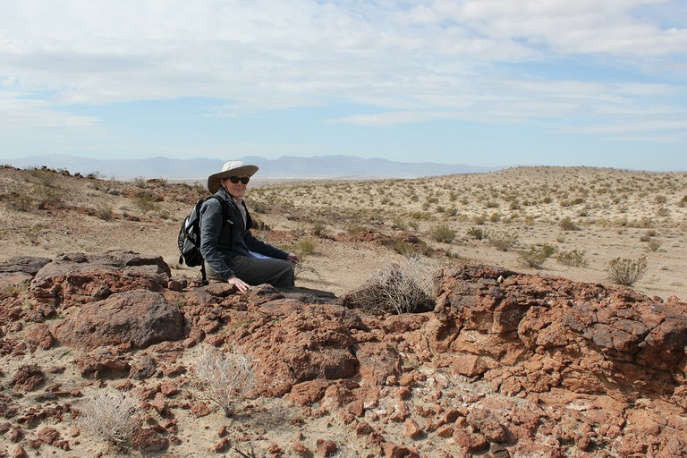 Kristin Berry, tracking desert tortoises in the Mojave last April. Her research helped inspire the reptile's listing as an endangered species.