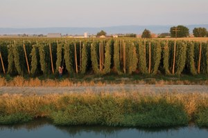 Climate-forced water planning in Washington's Yakima Valley