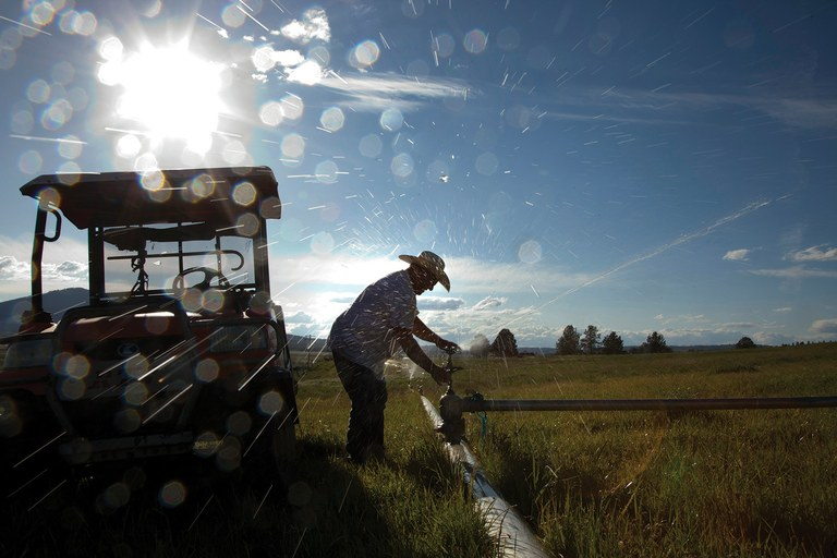 Rancher Ken Willard irrigates his pasture in June, one of the last opportunities he had to water. Willard and other ranchers on tributaries above Upper