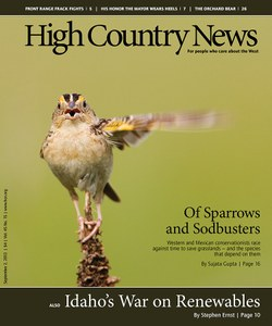 Of Sparrows and Sodbusters