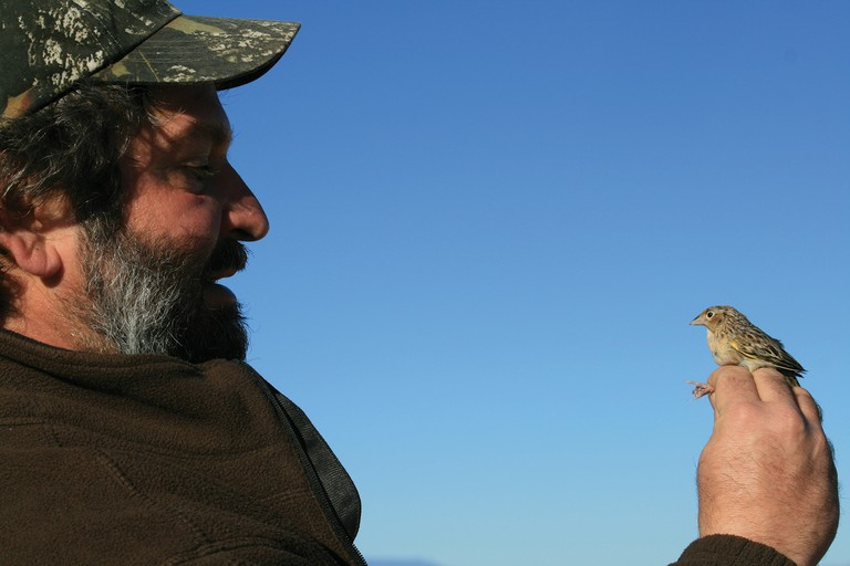 Rocky Mountain Bird Observatory's Arvind Panjabi with a sparrow.