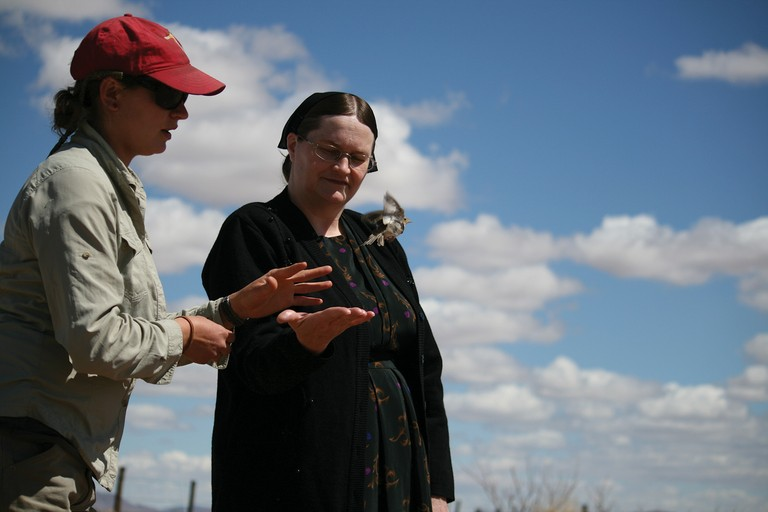 RMBO's Erin Strasser and a Mennonite woman release a grasshopper sparrow.