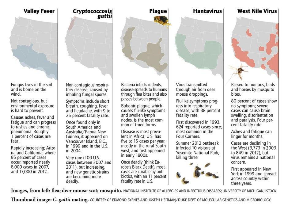 The fungus among us � High Country News