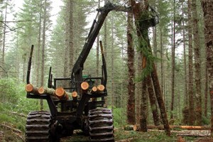 The Latest: A House bill would double timber harvest