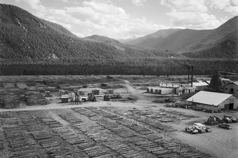 Sawmill, Lolo National Forest, Montana, 1987.
