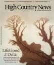 Lifeblood of the Delta