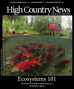 Ecosystems 101