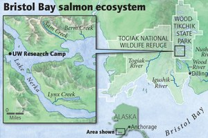 Bristol Bay salmon ecosystem map