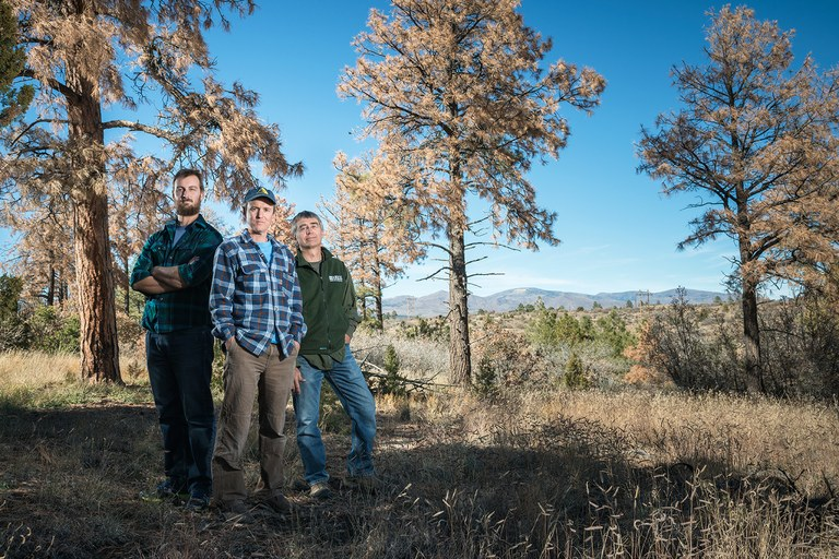 Tree physiologist Nate McDowell, center, climatologist Park Williams, left, and ecologist Craig Allen, right, are studying how trees die to help predict how forests will fare in a hotter future.