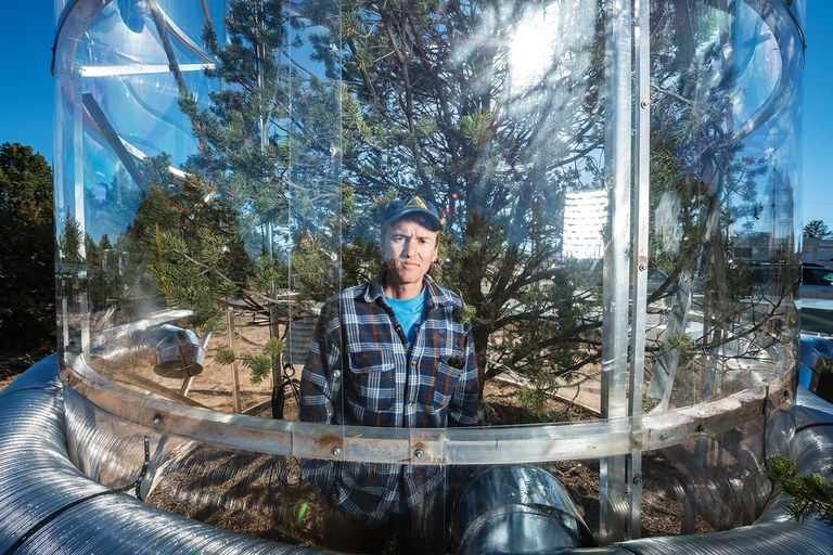 Nate McDowell, a tree physiologist at Los Alamos National Laboratory, pushes trees to the limits of moisture deprivation and heat in his outdoor laboratory in order to learn more about how trees die.