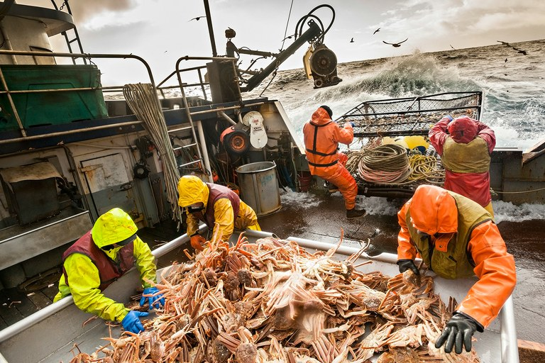 Fishing for opies, also known as snow crabs, on the Bering Sea.